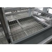 4 Tiers A Type Chicken Cage Holding Poultry Electrostatic Spraying Treatment for sale