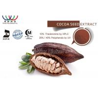 Food Grade Cocoa Bean Extract 10% Theobromine Anti - Diabetes For Weight Management Manufactures