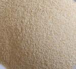 garlic granule G1 Manufactures