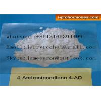 Quality China High Purity Raw Testosterone Steroid Muscle Building 4- Androstenedione Powder on sale      China High Purity R for sale
