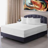 China Zippered Anti Mite Mattress Cover Waterproof For Mattress Protector Bed Sheet Hotel Mattress Zipper Bed Cover on sale