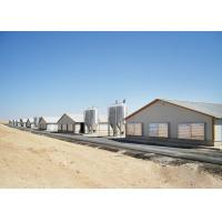 Quality ASTM Standard Prefabricated Steel Structure Building , Poultry Farm Design for sale