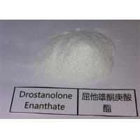 Injectable Anabolic Steroids 472-61-1 Drostanolone Enanthate Raw Powder custom clearance Manufactures