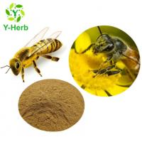 Quality Bulk Powder Flavones Water-Soluble Flavonoids Powder10% Honey Bee Propolis Extract for sale