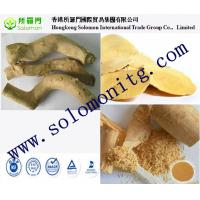 High Quality Strengthening Yang Product 50:1 Brownish-Yellow Powder Extracted from Tongkat Manufactures