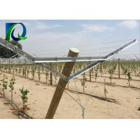 Quality Hot Galvanized Steel Grape Vine Trellis Systems With Angle Steel 45X25MM for sale