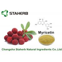 Bayberry Bark Pure Natural Plant Extracts Myricetin 98% For Health Product By HPLC Manufactures