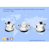 3 Handpieces Cryolipolysis Slimming Machine Weight Loss Beauty Equipment CR02 Manufactures