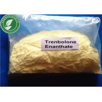 Bulking Steroid Powder Trenbolone Enanthate For Bodybuilding CAS 10161-33-8 Manufactures