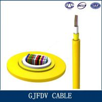 High Speed Fiber Optic Indoor Cable / GJFDV 48 Core Multimode Optical Cable Manufactures