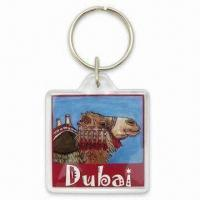 40mm Square Plastic Keychain with Changeable Photo Inside and Printed Design Insert Manufactures