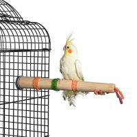 Quality forage n play wood perch for birds,cockatiel and macaw,large for sale