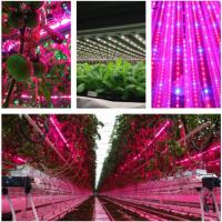 T8 4 Feet Hydroponic Led Grow Lights For Vegetables / Flower , AC85-265V Input Manufactures