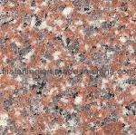 Granite Tiles (BDS6305) Manufactures