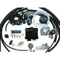 CNG Conversion Kits for CNG Cars with Multipoint Injeuction System Manufactures