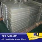 Chinese lenticular sheet/3d lenticular lens sheet/PP/PET/PS material sheet/3d frames/18, 20, 25, 32, 50,70,75,100,161 Manufactures