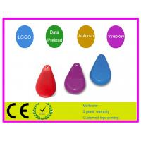 Red plastic stone shape  64MB, 128MB Customized USB Flash Drive AT-136 for  Notebook Manufactures