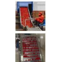Tomato Sauce Process Machine