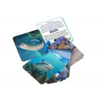 Animial Image 3d Lenticular Sheets Learning card For Children With Alphabet Manufactures