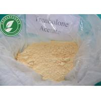 Pharmaceutical Steroid Trenbolone Acetate For Weight Loss CAS 10161-34-9 Manufactures