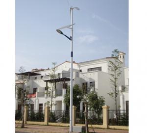 China beautiful design solar wind led street light on sale