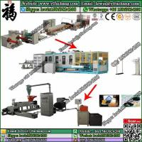 China EPS foamed sheet making machine PS Fast Food Container Making Machinery Manufactures