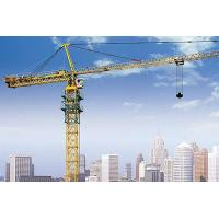 QTZ80 6010  Tower Crane jib length can be customized,with additional remote control device Manufactures