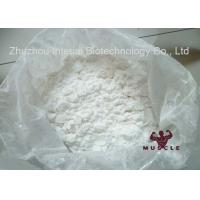 Strongest Testosterone Steroid Mesterolone 99% Proviron Powder CAS 1424-00-6 for Muscle Growth Manufactures