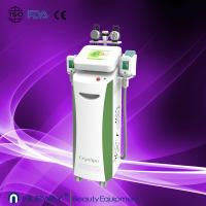 China 26% fat removal cryolipolysis freeze machine on sale