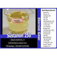 China Semi-Finished Injectable Anabolic Steroids Oil Sustanon 250 / Sust 250 For Muscle Building on sale