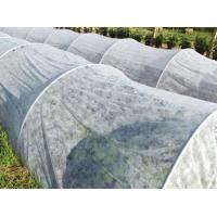 White Ground Cover Weed Control Fabric Lightweight Non Toxic For Fruit Trees Manufactures