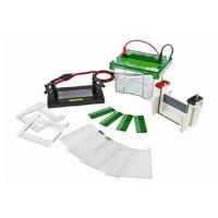 China Biobase New Product Vertical Electrophoresis tank ET-V1 Price Hot for Sale on sale