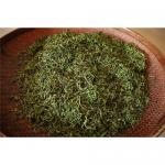 Fenghuang Unique Bush Tea Manufactures