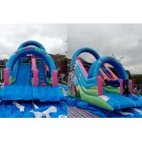 China Animated Comic Character Big Kids Ground Inflatable Dry Slide With Arch Door on sale