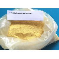 Cutting Cycle Steroid Trenbolone Enanthate Parabolan Injectable Powder 10161-33-8 Manufactures