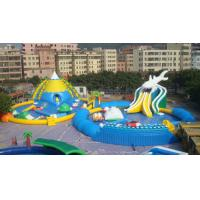 Giant Adults / Kids Inflatable Water Slide Pool for Funny Amusement Games Manufactures