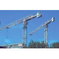 Tower Crane (QTZ 40) Manufactures