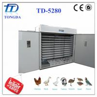 TD-5280 full automatic egg incubator the equipment for business Manufactures
