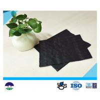 China PP 136gsm 200 lb Tensile Woven Stabilization Fabric wholesale