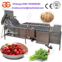 China High Quality Air Bubble Vegetable and Fruit Washing Machine on sale