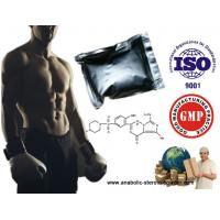 Muscle Building Steroids Testosterone Enanthate/ Test Enanthate/ Test En Testosterone Steroid Manufactures