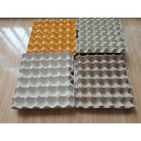 China Environment Friendly Paper Egg Tray Production Line Computer Controlled With High Efficiency on sale
