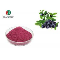 Pure Natural Freeze Dried Powder Spray Dried Blueberry Juice Powder Manufactures