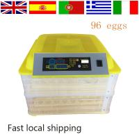 2016 newest design mini quail egg incubator On promotion HT-96 Manufactures