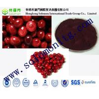 China high quality cranberry fruit powder sample free on sale