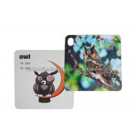 3D Flash Card Lenticular 3d Pictures Animal Design For Kids Gift Manufactures