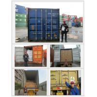 China inspection Third party inspection company Production supervising loading