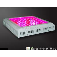 White / Orange 150W 5500lm 330 * 330mm LED Hydroponic Plant Grow Light For Garden Manufactures