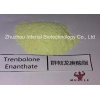 99.48% Purity Tren Anabolic Steroid Trenbolone Enanthate/Parabolan for Muscle Gain Fitness Manufactures