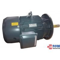 High Temperature Resistant Three Phase Asynchronous Motors  H132 cast iron frame Manufactures